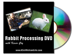 small-rabbit-process-dvd